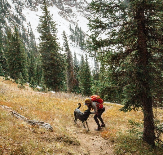 Discover the preparation tips, gear, and skills you and your dog need for your daily adventures. Get out and explore.