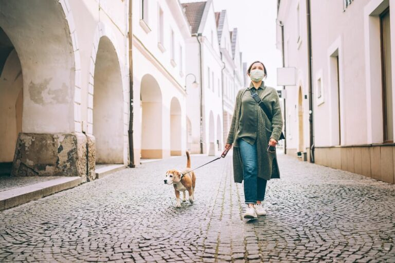 covid-19-and-pets