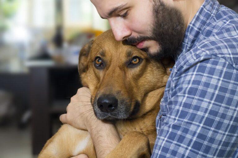 Pet owner hugging sick dog
