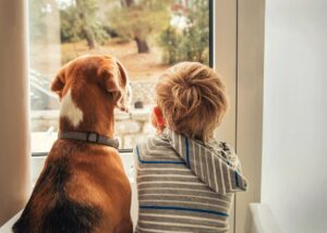 boy and dog look out window