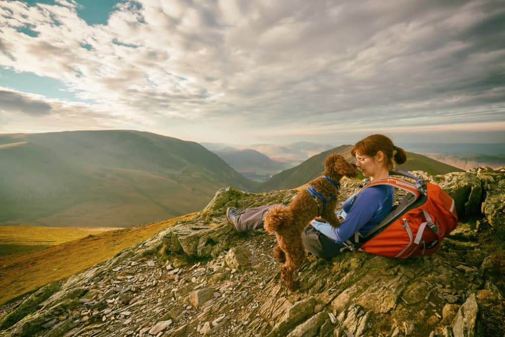 dog and owner rest on top of mountain