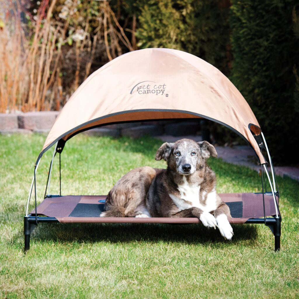 canopy dog bed shades pet