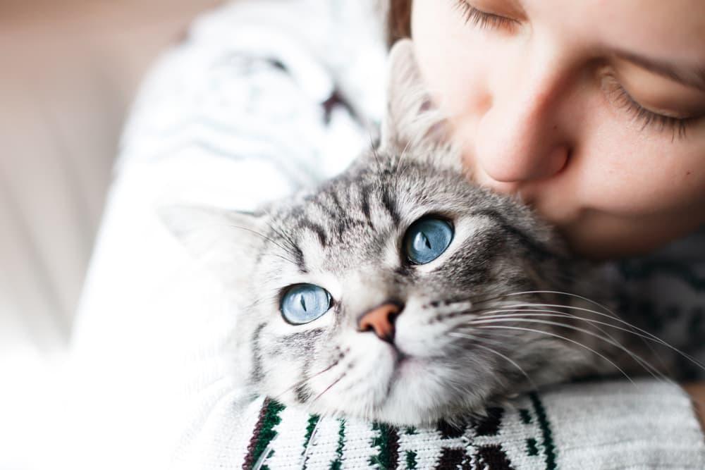 Woman hugging pet cat