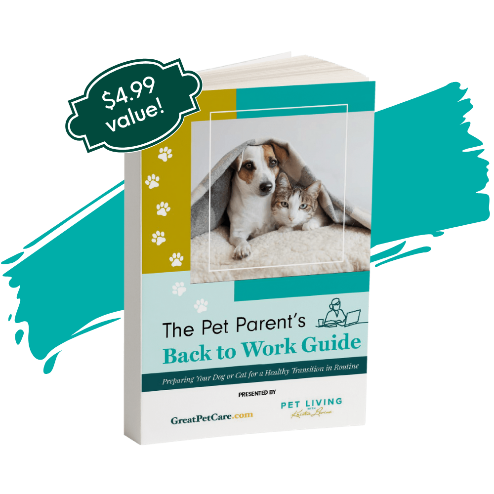 The Pet Parent's Back to Work Guide