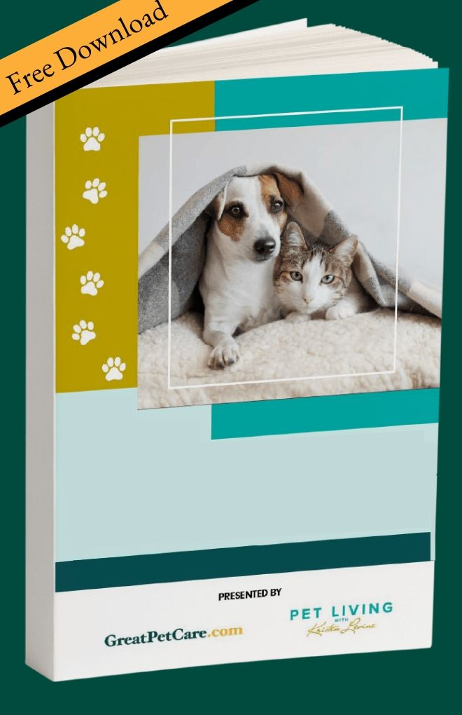 The Pet Parent's Back-to-Work Guide