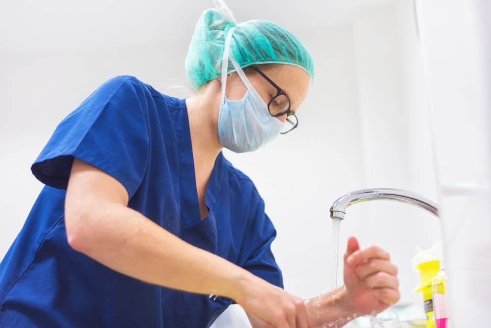 vet wearing mask washes hands