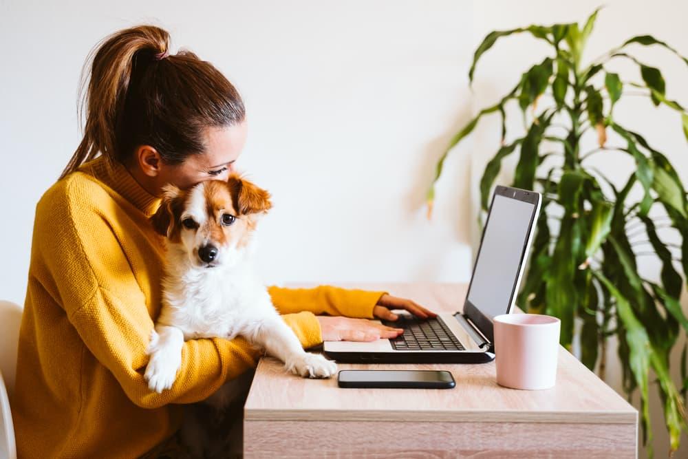 Woman hugging dog at computer