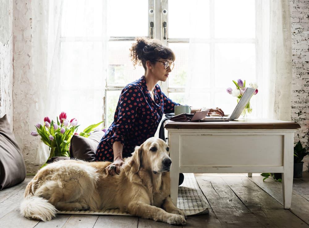 Woman sitting with senior dog