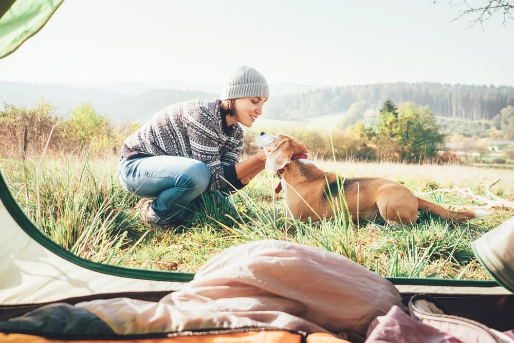woman and dog near camping tent