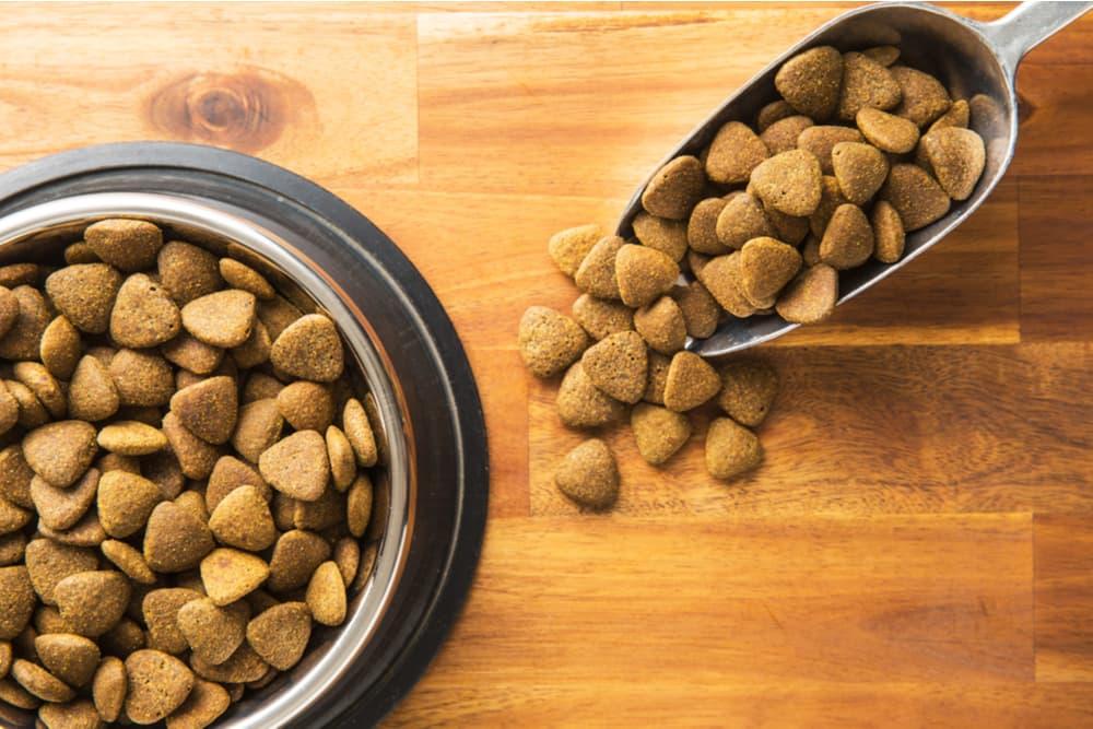Dog food scoop next to dog food bowl
