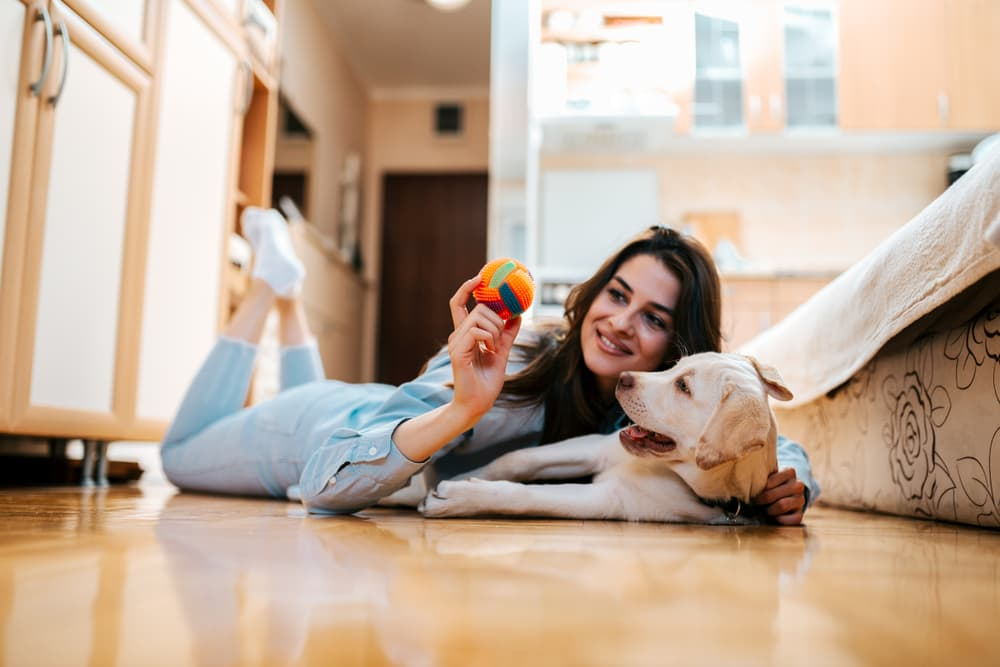 Woman at home playing with dog