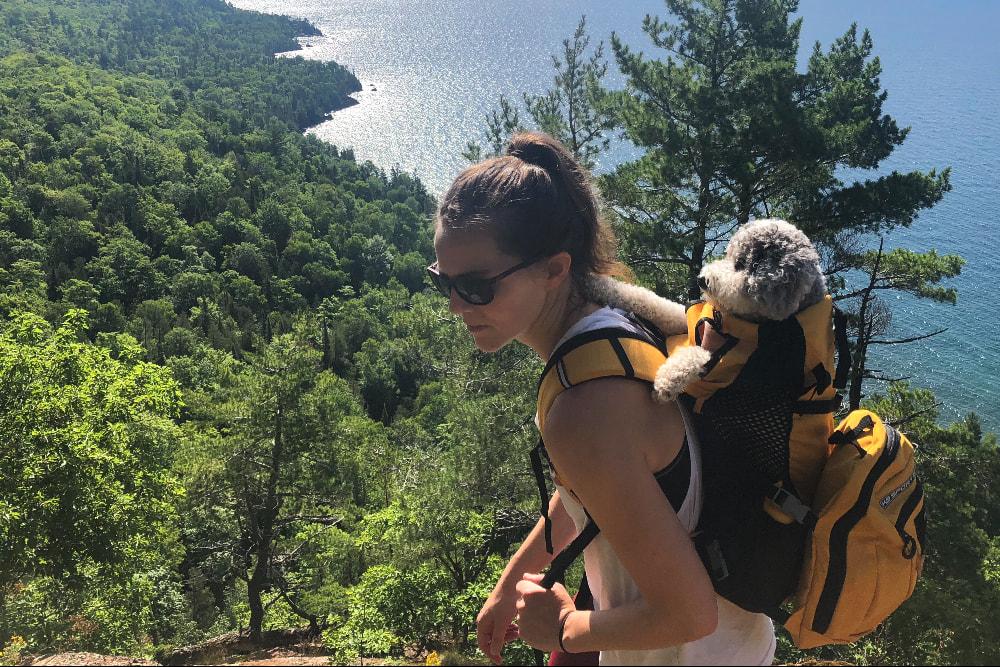 K9-Sportsac-dog carrier-backpack