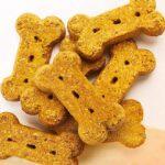 Halo vegan pumpkin dog treats