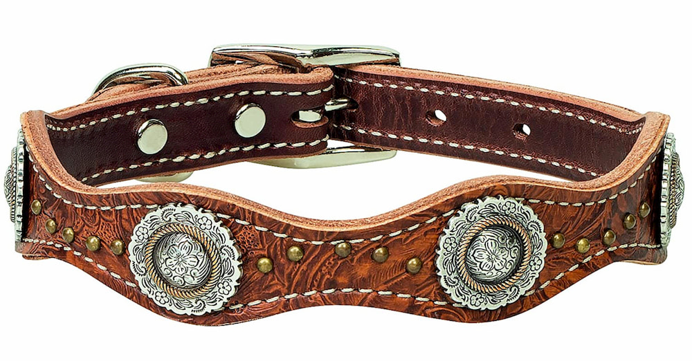 Western-inspired leather dog collar