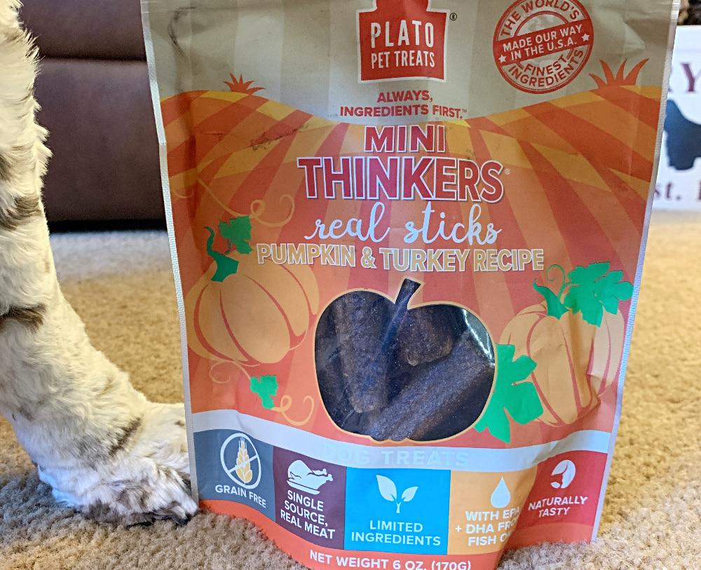 Best pumpkin dog treats Plato Pets