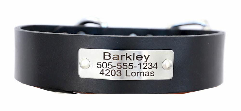 Engraved dog collar name