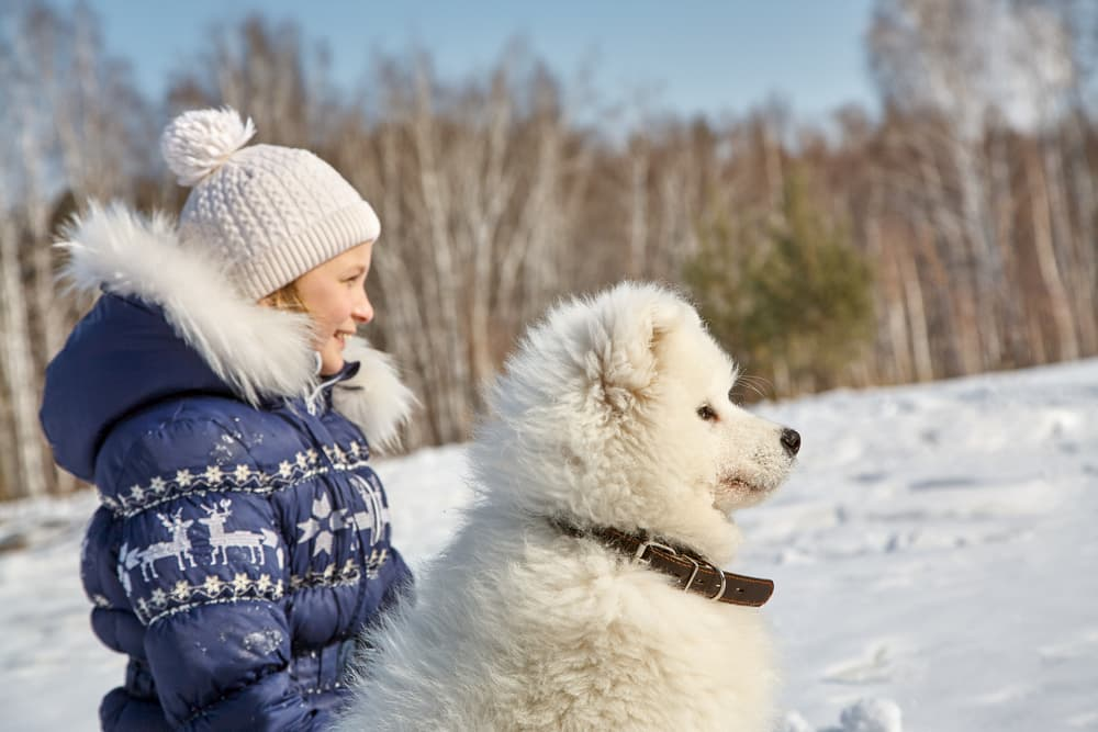girl and dog in snow