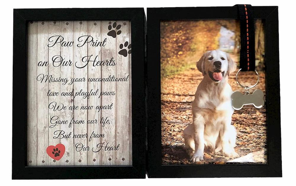Dog memorial frame