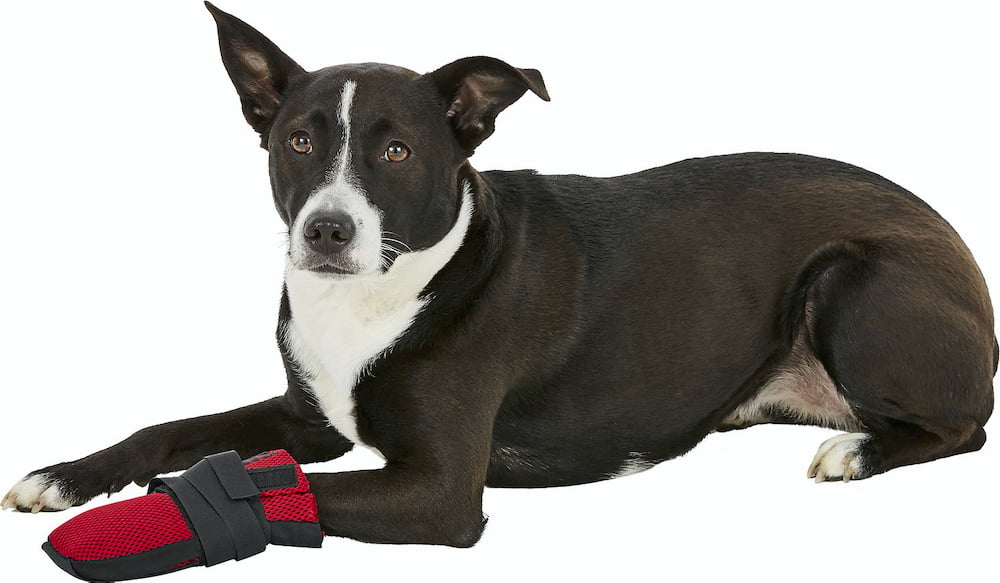 Ultra Paws Wound Dog Boot