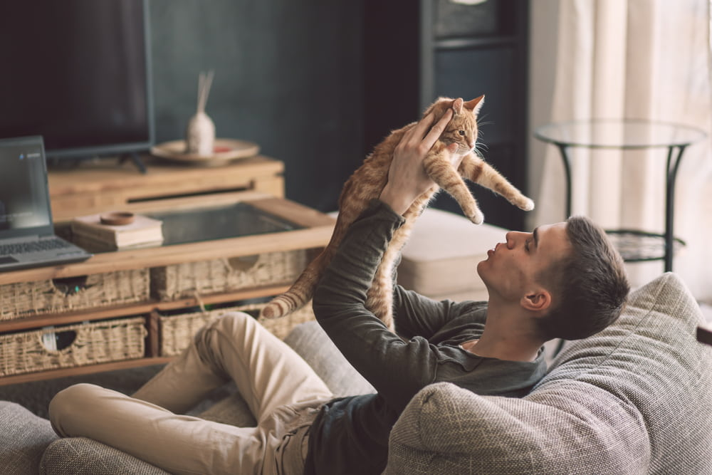 Man playing with cat