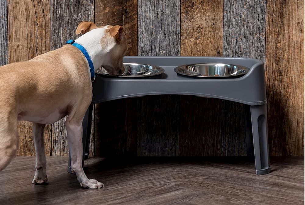 IRIS elevated dog bowl