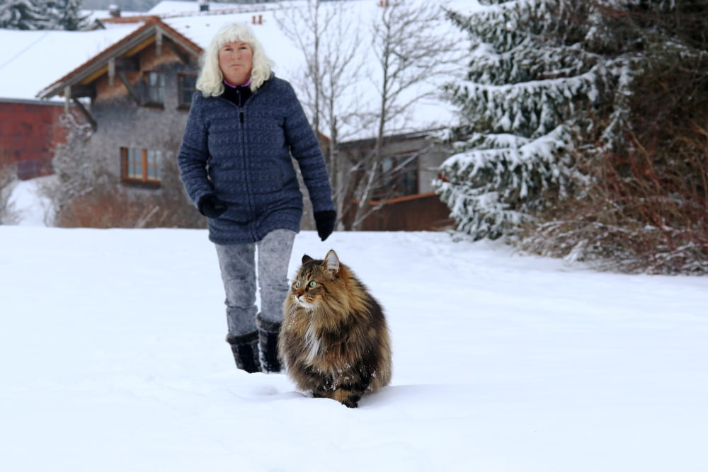 Woman with Norwegian Forest Cat outside