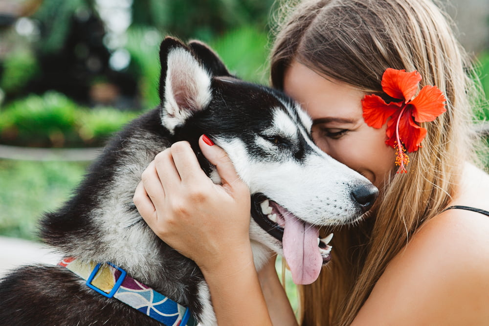 Woman hugs dog in Hawaii