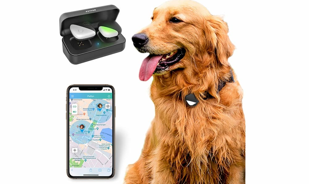 PetFon Dog GPS Tracker