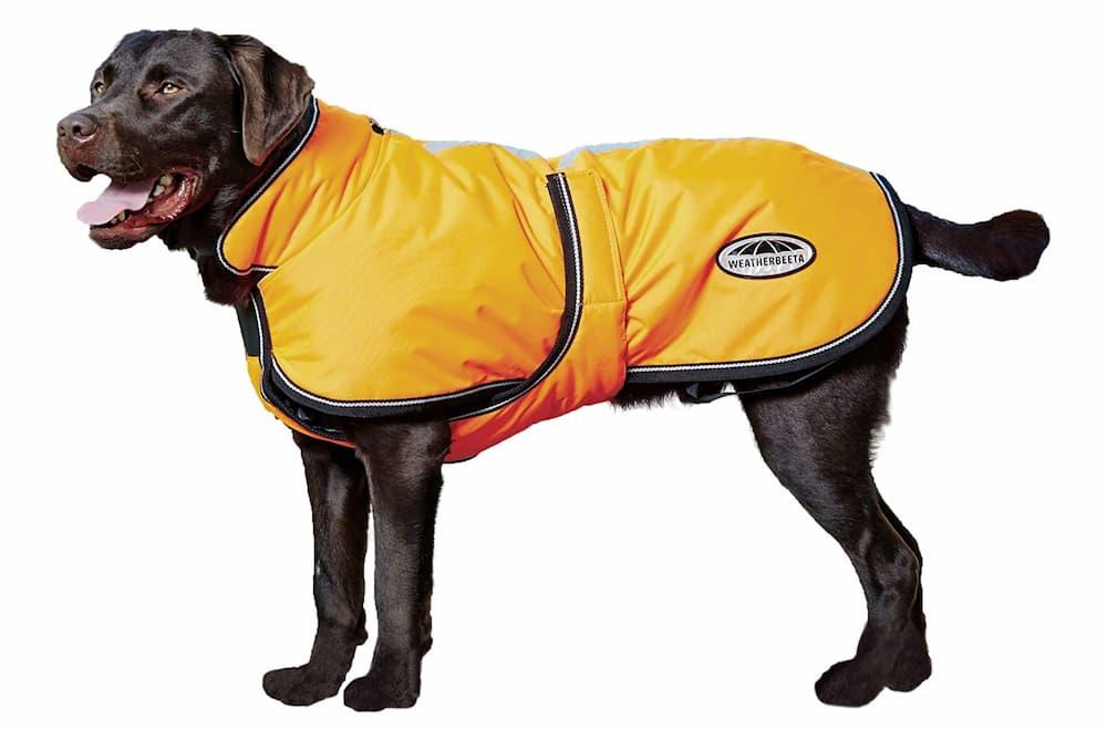 Weatherbeeta Reflective Dog Parka