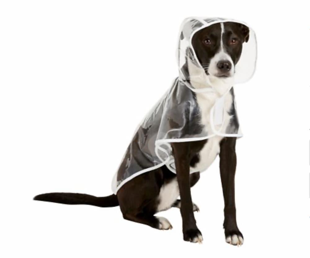 Frisco Vinyl Clear Dog Coat