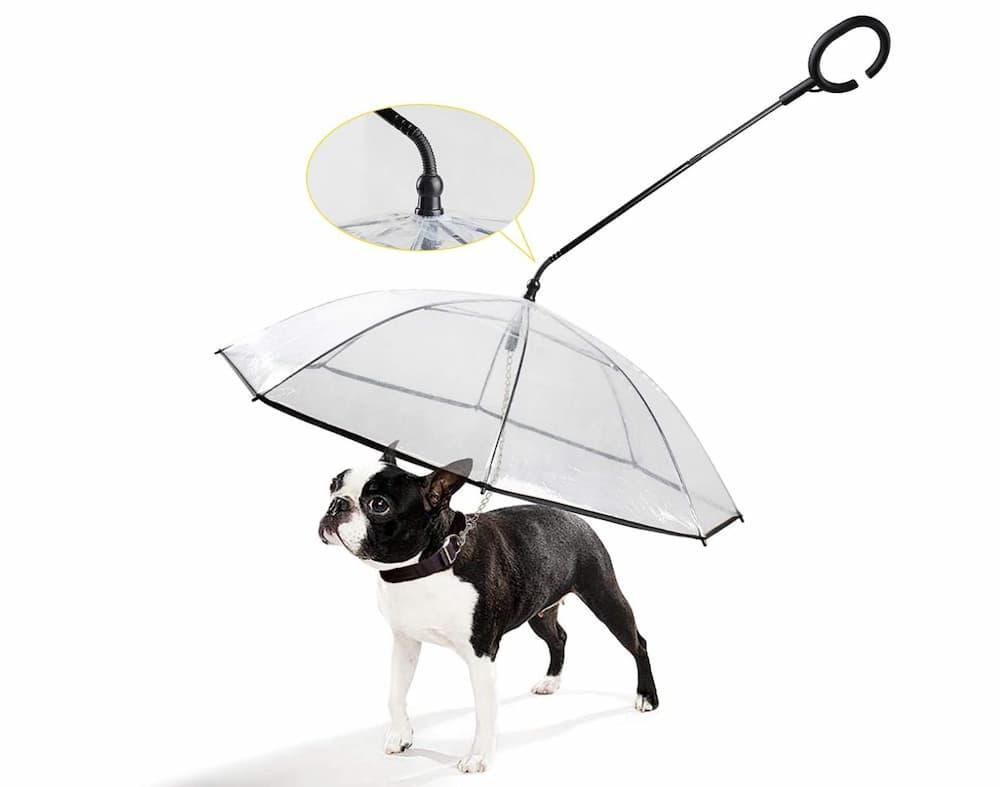 K&L C-Shape Dog Umbrella