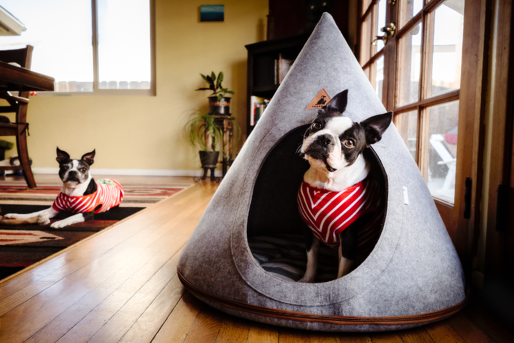 Dog Teepee Beds: 7 Cool Canine Hangouts