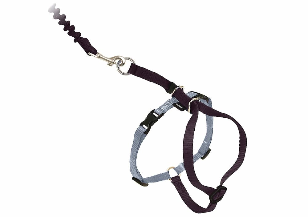 PetSafe Come With Me Kitty Harness
