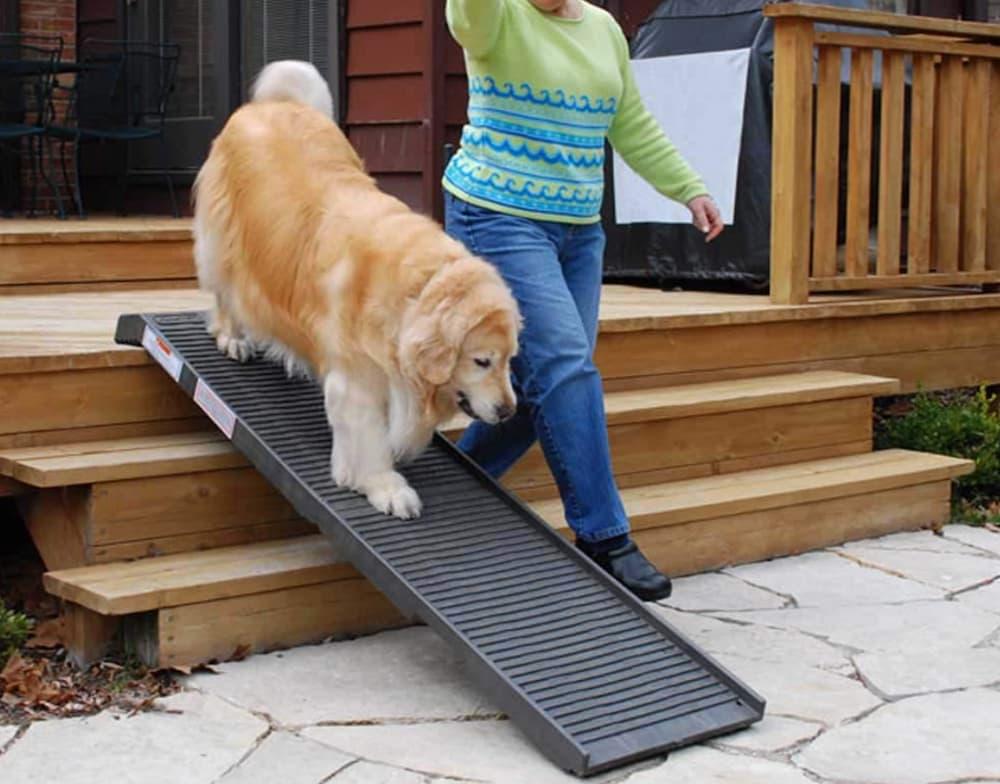 PetStep Original Folding Dog Ramp