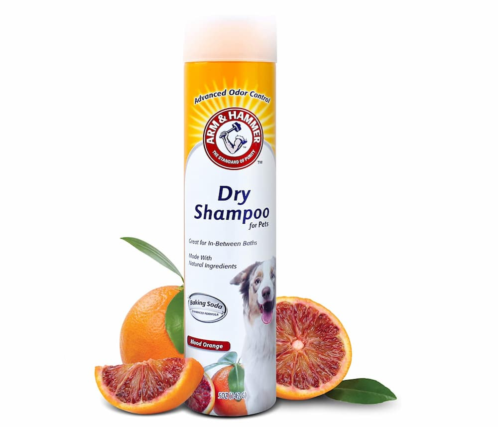 Arm & Hammer for Pets Aerosol Dry Shampoo for Dogs