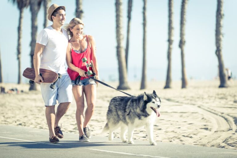 Couple walking dog in Los Angeles