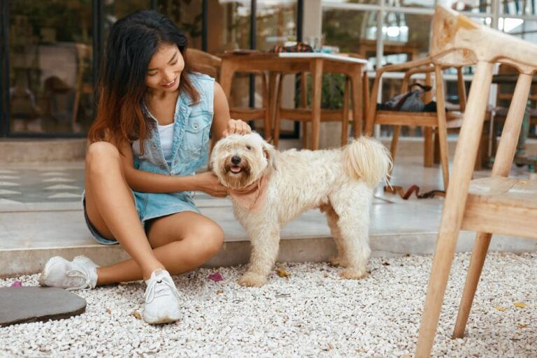 Woman with dog at restaurant outdoors