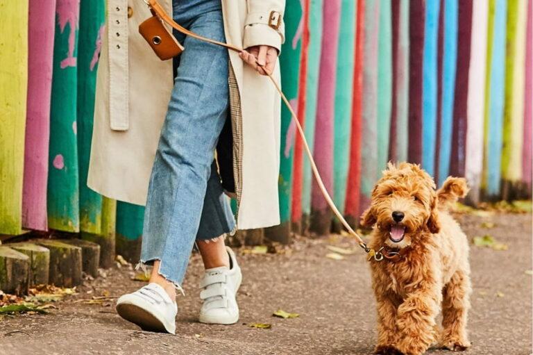 Woman walking dog with dog poop bag holder
