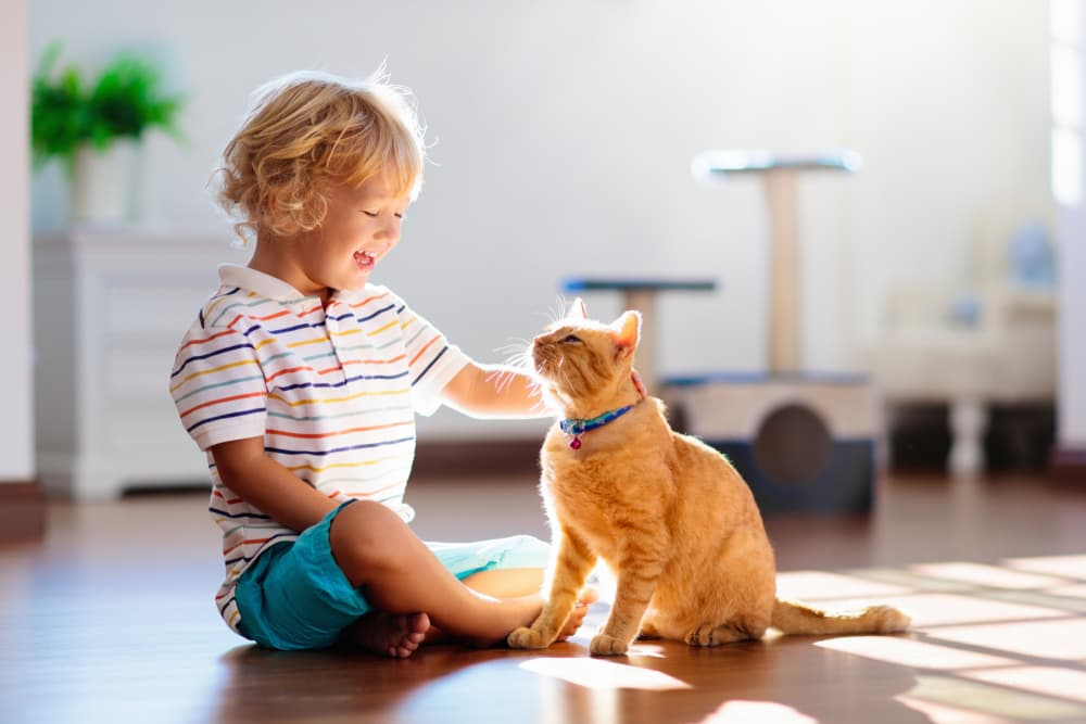 Little boy sitting on the floor petting his cat with a big smile on his face