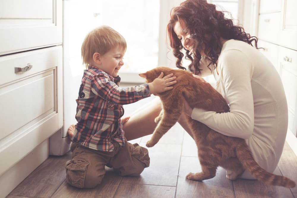 Child and mother playing with a cat on the kitchen floor