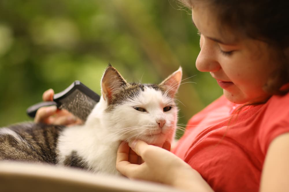 Teenager petting and brushing her cat