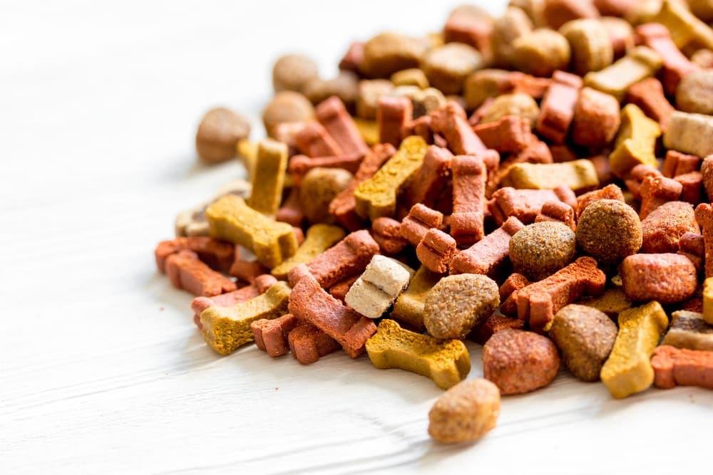 Dog food on table