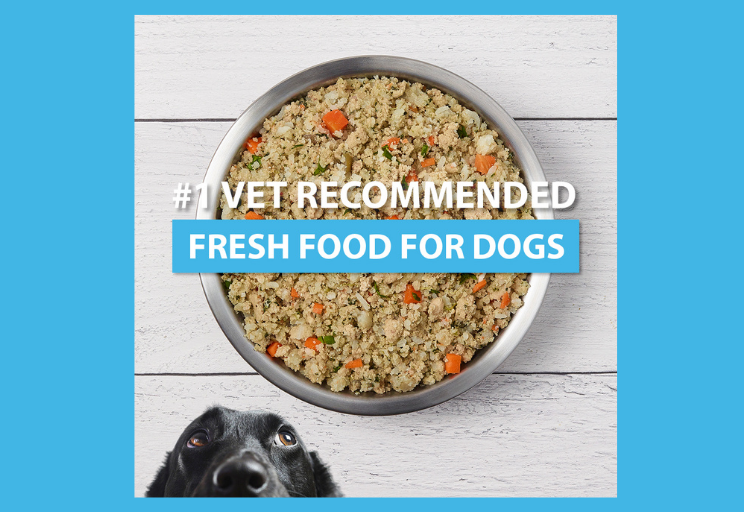 Get 22% Off Your First Purchase of JustFoodForDogs