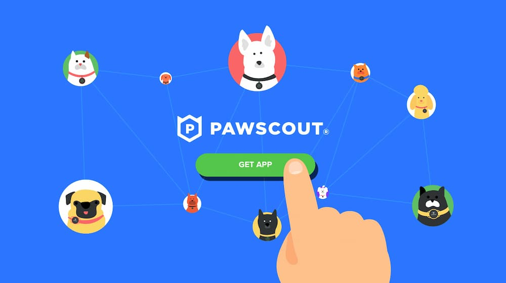 Smart pet tag Pawscout illustration of the app with pets wearing collars