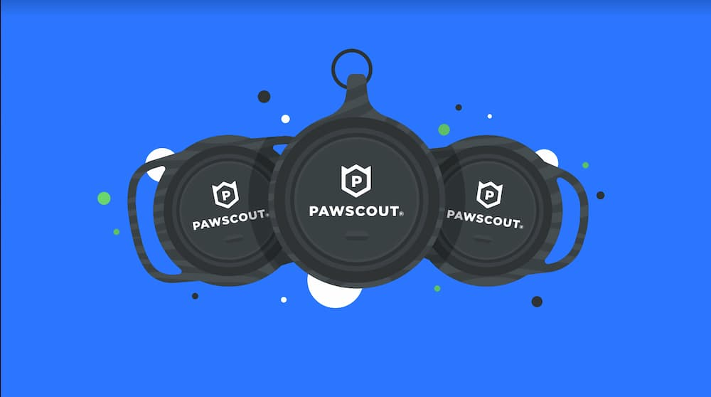 Image of smart pet tags from Pawscout