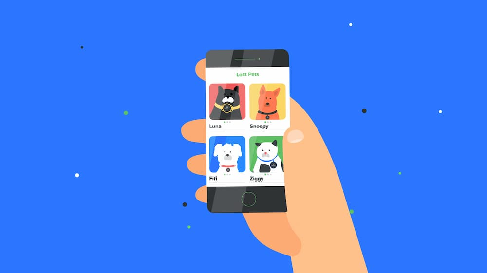 Illustration of phone with app open to lost pets page