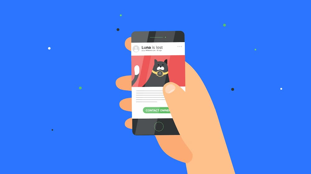 Image of Pawscout in action, mobile phone illustration with lost cat image as is a smart pet tag