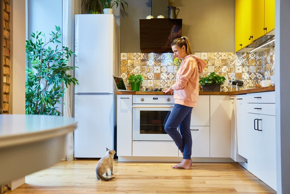 Lady standing in her kitchen with her cat