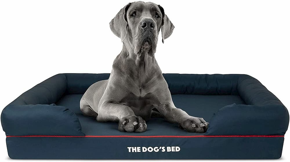 the-dogs-bed