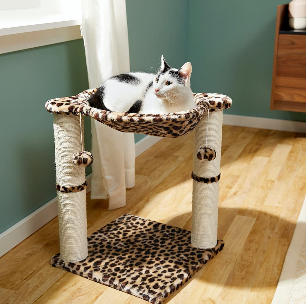 Frisco hammock cat tree